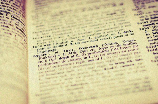 Ausschnitt Wörterbuch